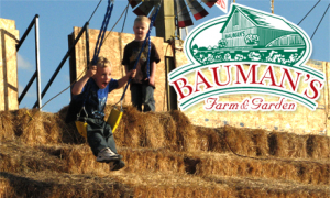 Bauman Farms & Pumpkin Patch